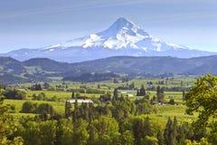 Mt. Huv och Hood River Valley Oregon. Royaltyfri Bild