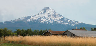 Mt Huv - Oregon Arkivbilder