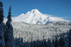 Mt. Huv vinter, Oregon Royaltyfria Foton