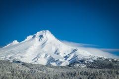 Mt. Huv vinter, Oregon Fotografering för Bildbyråer