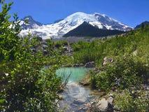 Mt Il Tarn più piovoso & glaciale, il fiume White, traccia della moraine di Emmons, Mt Rainier National Park, Washington fotografia stock libera da diritti