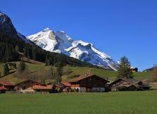 Mt innevato Oldenhorn e chalet svizzeri su un prato verde Fotografia Stock