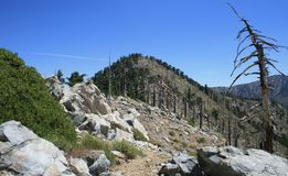 Mt. Islip Approach. Trail leading to a summit in the high country of the San Gabriel Mountains, California Stock Photos