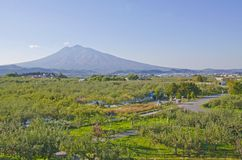 Mt. Iwaki and Apple park Royalty Free Stock Images