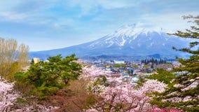 MT Iwaki met Volledige bloei Sakura - Cherry Blossom bij Hirosaki-park in Japan royalty-vrije stock fotografie