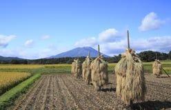 Mt.Iwate en Landschap van padieveld Royalty-vrije Stock Foto