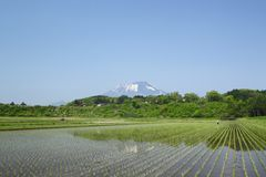 Mt.Iwate and pastoral landscape Royalty Free Stock Image