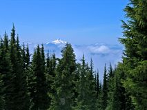 Mt. Jefferson, Oregon. Viewed from Mt. Hood Royalty Free Stock Photo