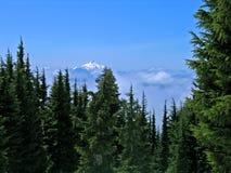 Mt. Jefferson, Oregon royalty free stock photo