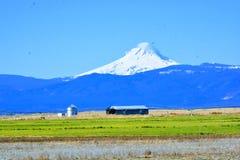 Mt Jefferson Oregon centrale dietro l'azienda agricola fotografia stock libera da diritti