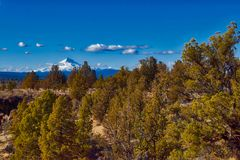 Mt Jefferson, wie von gekrümmter Fluss-Ranch in Oregon angesehen lizenzfreie stockbilder