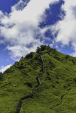 Mt Jerarquía de Hehuan Eagle en Taiwán Foto de archivo