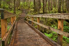 Mt. Jumbo Trail Bridge Juneau, AK Royalty Free Stock Photography
