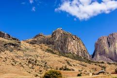 Mt kameleont Royaltyfria Bilder