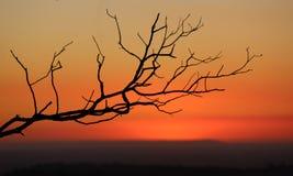 Mt Kannibale-Sonnenuntergang Stockfoto