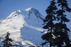 MT kap, de winter, Oregon Royalty-vrije Stock Fotografie