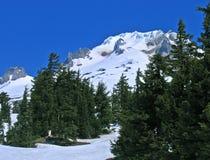 Mt. kap, Oregon Stock Foto's