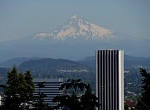 MT Kap van de Japanse Tuin in Portland royalty-vrije stock afbeelding