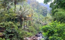 Mt Kerinci tropisk skog Fotografering för Bildbyråer