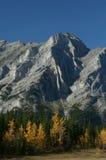 Mt Kidd, automne photo stock