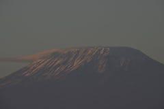 Mt. Kilamanjaro. At the base of Mt. Kilamanjaro Stock Photography