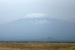 Mt. Kilimanjaro, Africa. Stock Image