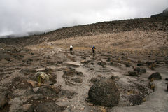 Mt Kilimanjaro, Tanzania, Africa Royalty Free Stock Photo