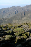 Mt Kilimanjaro, Tanzania, Afryka Obrazy Stock