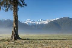 Mt-kock och Mt Tasman, otta, Nya Zeeland Royaltyfria Foton