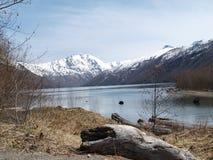 Mt Lago spirit de St Helens Fotografia de Stock Royalty Free