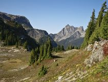 Mt. Larabee in Washington State Stock Image