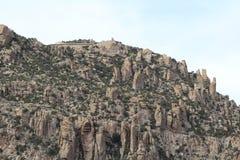 Mt Lemmon, AZ 免版税图库摄影
