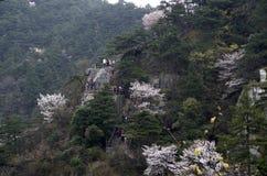 Mt. Lushan National Park, Jiangxi, China Stock Photos