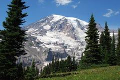 Mt. Más lluvioso Imagen de archivo