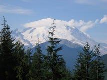 Mt. Más lluvioso Fotos de archivo