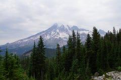 Mt Más lluvioso, con el bosque de la conífera Fotos de archivo libres de regalías