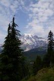 Mt Más lluvioso, con el bosque de la conífera Imagenes de archivo