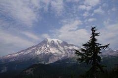 Mt Más lluvioso, con el bosque de la conífera Imagen de archivo libre de regalías