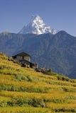 Mt. Machhapuchhare e villaggio Fotografie Stock Libere da Diritti