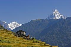 Mt. Machhapuchhare y aldea fotografía de archivo