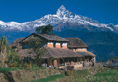 MT Machhapuchhre/Fishtail Stock Afbeelding