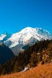 Mt. Mais chuvoso Imagem de Stock Royalty Free