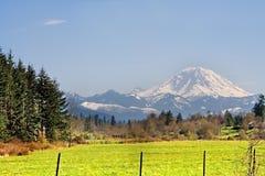 Mt. Mais chuvoso visto transversalmente de um campo imagens de stock