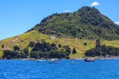 Mt Maunganui yachts Royalty Free Stock Images