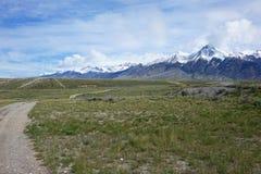 Mt McCaleb около Mackay, Айдахо Стоковые Изображения RF