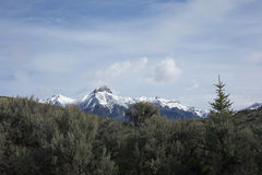 MT McCaleb dichtbij Mackay, Idaho Stock Foto