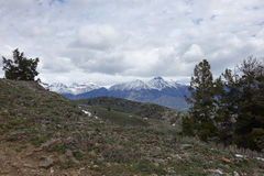 Mt McCaleb, Mackay -, Idaho Zdjęcia Royalty Free