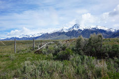 Mt. McCaleb - Mackay, Idaho Stock Photos