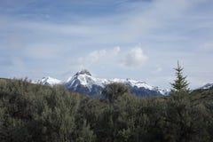 Mt McCaleb nära Mackay, Idaho Arkivfoto
