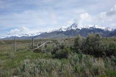 Mt McCaleb nära Mackay, Idaho Arkivbilder